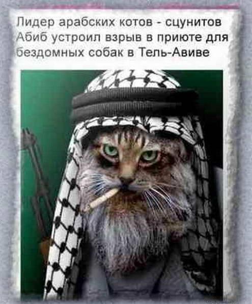 dp-arab-terrorist-02