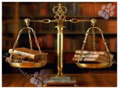 Законы и юриспруденция