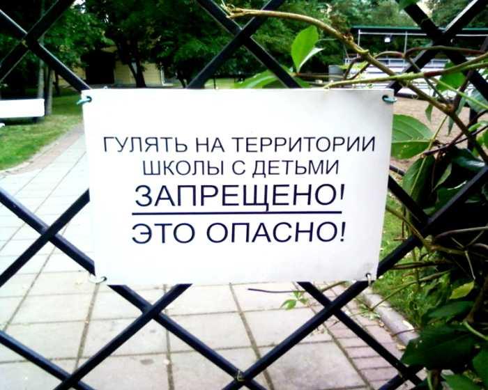dpi-statya-shkolnoe-obrazovanie-01