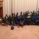 Почему кошки роняют новогодние ёлки?