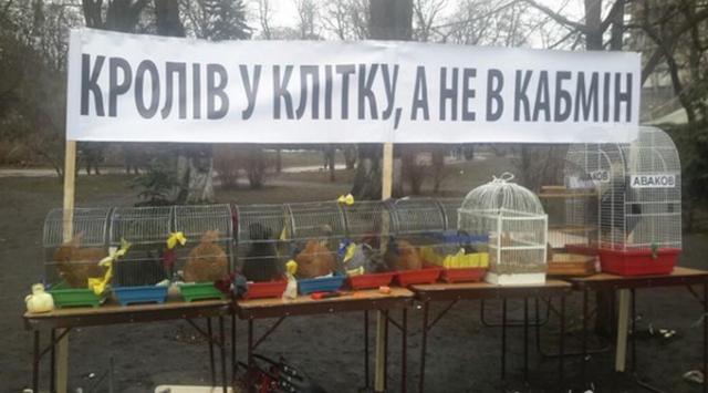 dp-novosti-fevral-2016-09