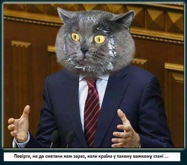 dp-novosti-fevral-2016-11